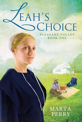 Leah's Choice: Pleasant Valley Book One