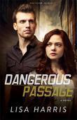 Dangerous Passage: A Novel