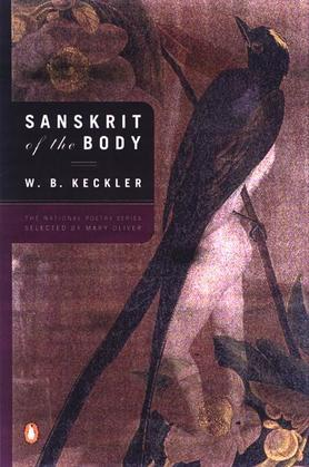 Sanskrit of the Body