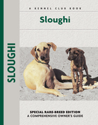 Sloughi: A Comprehensive Owner's Guide