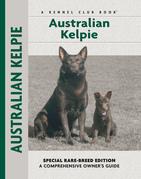 Australian Kelpie