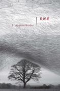 Rise: Stories
