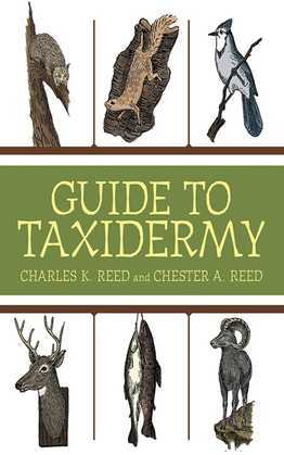 Guide to Taxidermy