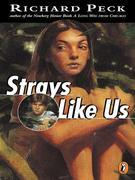 Strays Like Us
