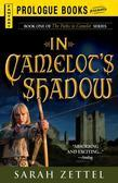 In Camelot's Shadow: Book One of The Paths to Camelot Series