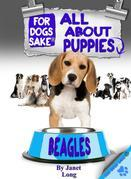 All About Beagle Puppies