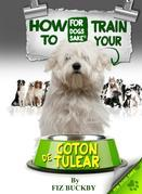 How to Train your Coton de Tulear