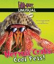 Hermit Crabs: Cool Pets!