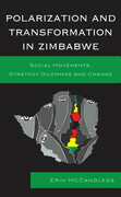 Polarization and Transformation in Zimbabwe: Social Movements, Strategy Dilemmas and Change