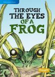 Through the Eyes of a Frog