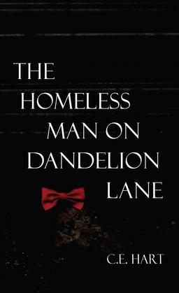 The Homeless Man on Dandelion Lane