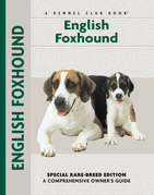 English Foxhound: A Comprehensive Owner's Guide