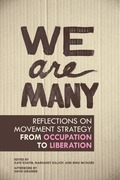 We Are Many: Reflections on Movement Strategy from Occupation to Liberation