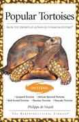 Popular Tortoises