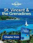 Lonely Planet St Vincent & the Grenadines: Chapter from Caribbean Islands Travel Guide