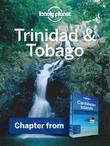 Lonely Planet Trinidad & Tobago: Chapter from Caribbean Islands Travel Guide