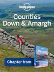 Lonely Planet Counties Down & Armagh: Chapter from Ireland Travel Guide