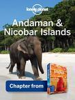 Lonely Planet Andaman & Nicobar Islands: Chapter from India Travel Guide