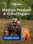 Lonely Planet Madhya Pradesh & Chhattisgarh: Chapter from India Travel Guide