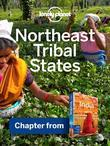 Lonely Planet Northeast States: Chapter from India Travel Guide