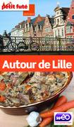 Autour de Lille 2013-2014 Petit Futé (avec cartes, photos + avis des lecteurs)