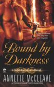 Bound By Darkness: A Soul Gatherer Novel