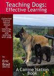 Teaching Dogs: Effective Learning
