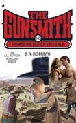 The Gunsmith 345: Someone Else's Trouble