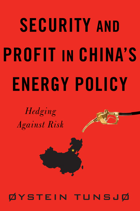 Security and Profit in China's Energy Policy: Hedging Against Risk