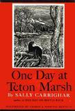 One Day At Teton Marsh