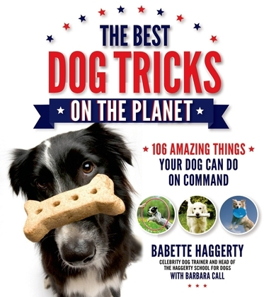 The Best Dog Tricks on the Planet