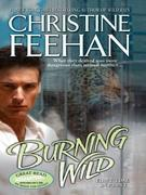 Christine Feehan - Burning Wild