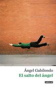 El salto del ángel. Palabras para comprendernos