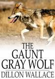 The Gaunt Gray Wolf: A Tale of Adventure with Ungava Bob