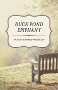 Duck Pond Epiphany: A Novel