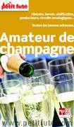Guide de l'amateur de Champagne 2014 Petit Futé (avec cartes, photos + avis des lecteurs)