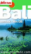 Bali 2014 Petit Futé (avec cartes, photos + avis des lecteurs)