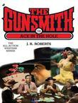 The Gunsmith 316