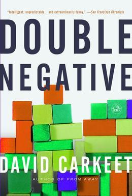 Double Negative: A Novel