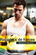 Rapports de forces (roman gay)