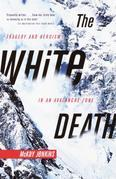 The White Death: Tragedy and Heroism in an Avalanche Zone