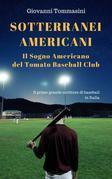 Piccoli inconsapevoli eroi del baseball, il baseball come un romanzo