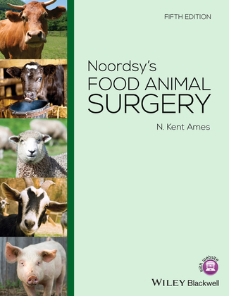 Noordsy's Food Animal Surgery