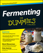 Fermenting For Dummies