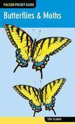 Falcon Pocket Guide: Butterflies & Moths