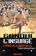 Gandhi l'insurgé
