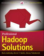 Professional Hadoop Solutions
