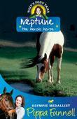 Tilly's Pony Tails 8: Neptune the Heroic Horse
