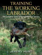 Training The Working Labrador: The Complete Guide To Management And Training