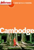 Cambodge Carnet de Voyage 2014 Petit Futé (avec avis des lecteurs)